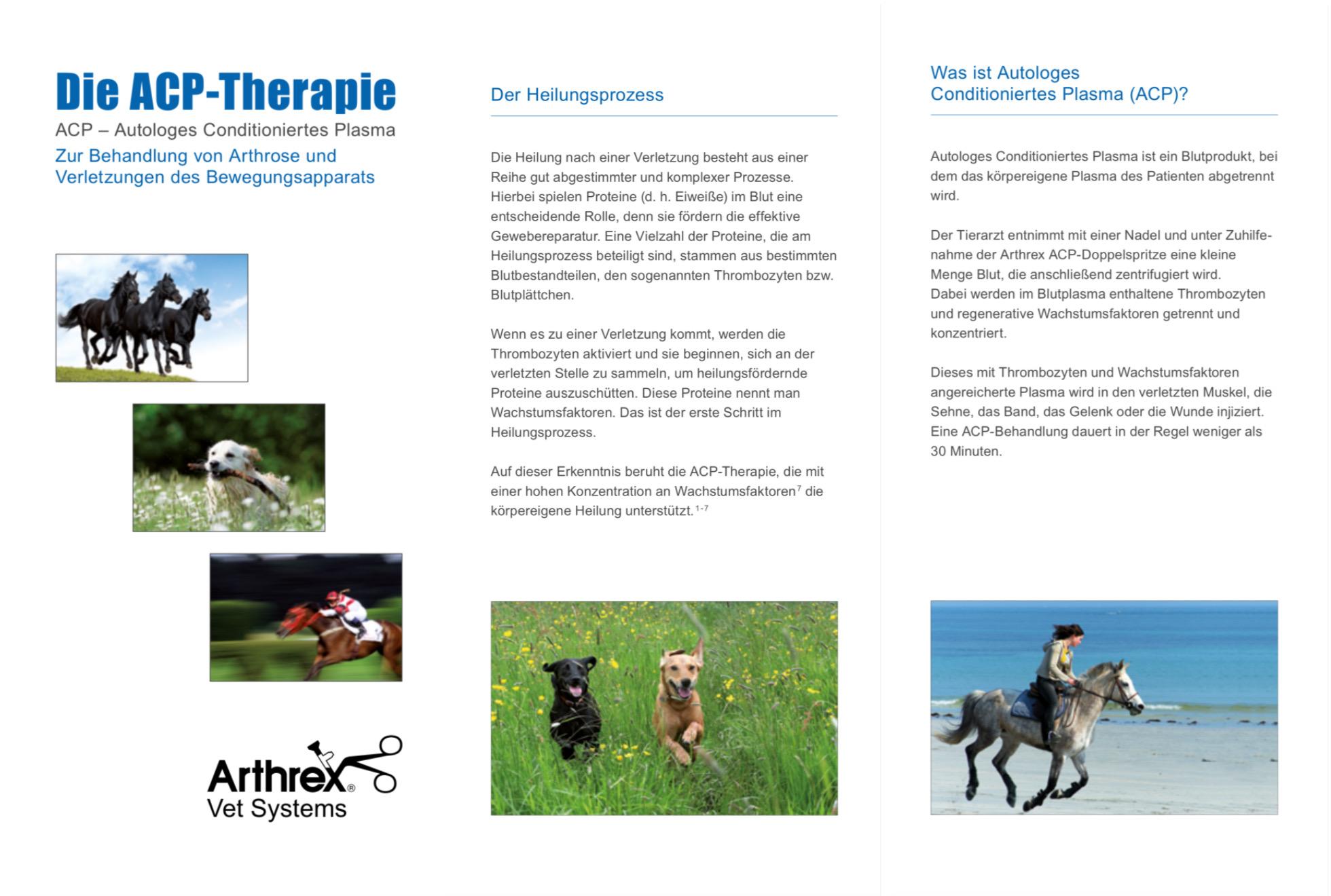 Tierarzt für Pferde - die mobile Pferde-Praxis 67604603 5BF2 4424 A3DC FAB8B57D9D80